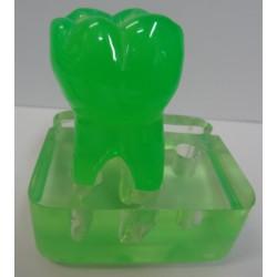 Porta Caneta e Cartão Dente Molar - Transparente Cores